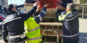 Foggia, pesce venduto abusivamente in strada