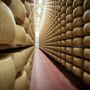 Furti vino e parmigiano, scoperta banda. 4 i cerignolani