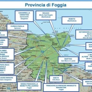 Arrestato Tommaso Pacilli, vicino al clan dei montanari Li Bergolis