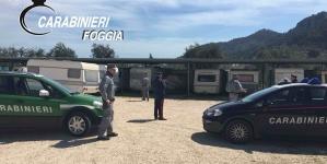 Sequestrato parcheggio abusivo nel Parco Nazionale del Gargano