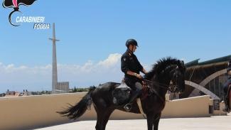 Controllo del territorio garganico, si uniscono anche i Carabinieri del Reggimento a cavallo