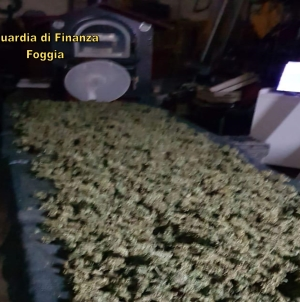 Sequestrati 22 kg di marijuana: tratti in arresto un 23enne e una donna
