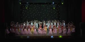 Scarpette Rosa: la danza della poesia e delle emozioni