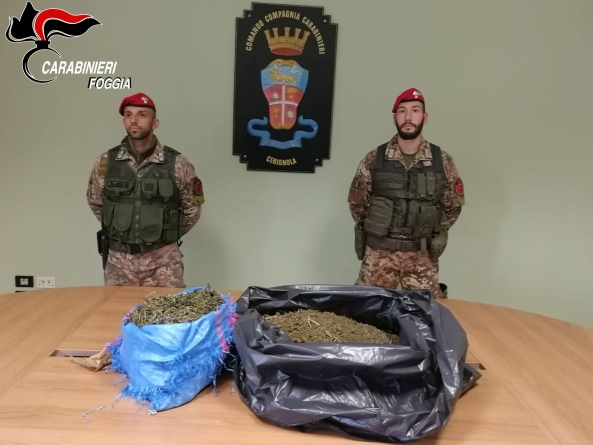 Nascondeva 8 chili di marijuana nella masseria di famiglia: arrestato 42enne