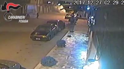 Droga, bombe e soldi: otto persone arrestate dai Carabinieri. Duro colpo alla criminalità garganica