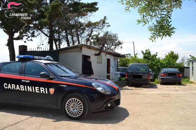 Furti nelle abitazioni estive di Lesina: arrestato 47enne