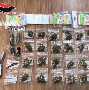 Detenzione ai fini di spaccio di droga: arresatto un 19enne