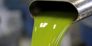 Olio di semi venduto come extravergine d'oliva: due arresti tra Puglia e Toscana