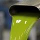 Olio di soia spacciato per extravergine: 24 arresti nel foggiano