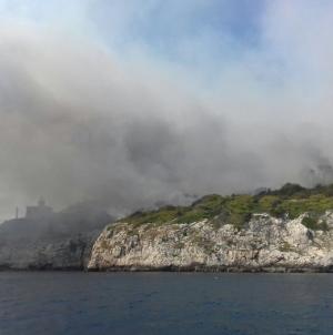 Paura per una serie di incendi dolosi: colpita San Domino