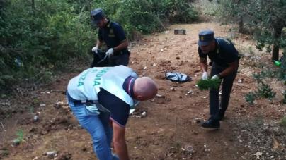 Sequestrata una piantagione di canapa indiana: due arresti