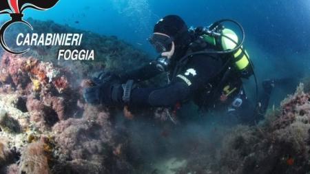 Una vecchia anfora nei fondali delle Isole Tremiti: la scoperta dai Carabinieri
