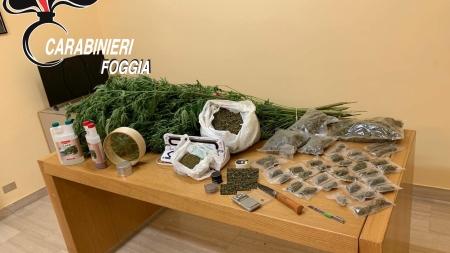 Coppia di giovani fidanzati producevano e spacciavano marijuana: arrestati