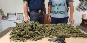 Marijuana ed una pistola con matricola abrasa rinvenuti nelle campagne