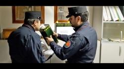 Forestali sequestrano 1.200 litri 'olio evo'