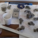 Sorpreso in casa con 400 dosi di marijuana e allaccio elettrico abusivo: arrestato 54enne