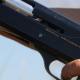 Agricoltore uccide brutalmente un cane con un colpo di fucile