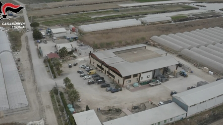 Blitz anticaporalato nel foggiano: arrestati 3 imprenditori, sigilli a due importanti aziende